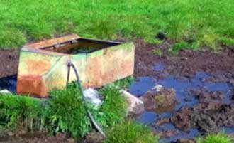 cattle-trough