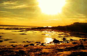 Yellow-sky-over-beach